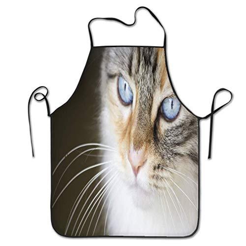dfhfdsh Küchenschürze,Grillschürzen,Funny Personality Apron Photography Turkish Angora cat Steel Blue Eyes Eyed Chef Kitchen Aprons Waiter Apron