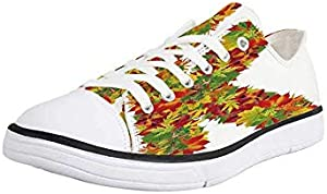 Canvas Sneaker Low Top Shoes,Letter K,Colorful Gerberas Bouquet Organic Natural Flowers Composition Uppercase K Symbol Decorative