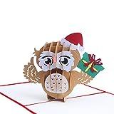 3D Owl Pop Up Birthday Card, Pop Up Holiday Card for Kids, Children, Men, Women