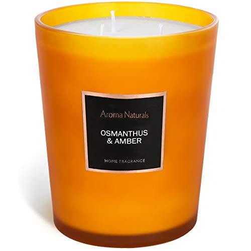 Aroma Naturals Duftkerzen | Große Kerze im Glas, 943g Natürliche Soja-Aromatherapie-Kerzen | 60+ Stunden Brenndauer mit 3 Baumwolldochten, als Geschenk (Duftblütenbaum und Blutjohanneskraut)