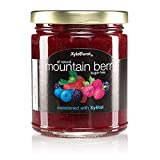 Xyloburst Sugar Free Mountain Berry Xylitol Jam Keto Friendly & Gluten Free 10 Ounce Glass Jar - Made in the USA