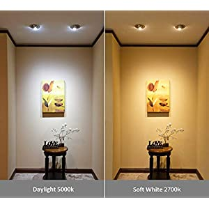 ( 6-Pack) SUNMEG A19 LED Light Bulb, 100 Watt Equivalent (11W), E26 LED Bulbs, 1050 Lumens, Daylight (5000K), 120VAC