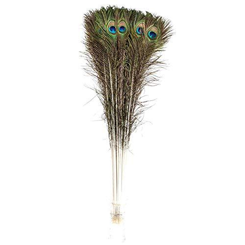 Creny Lot de 20 plumes de paon 80 à 90 cm pour décoration de maison, mariage, fête, bricolage
