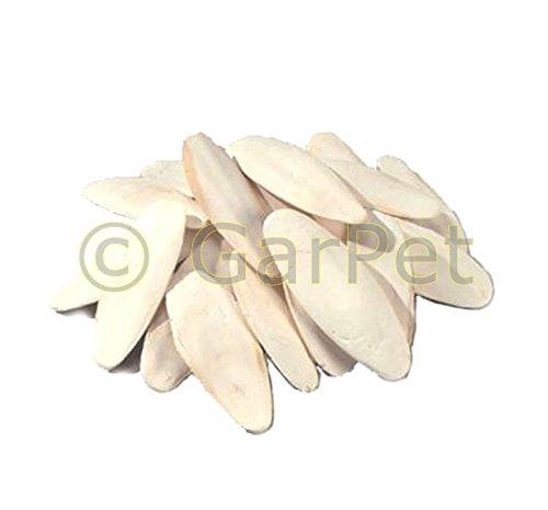 GarPet 1000gr 1KG 10-15 cm Sepiaschale Sepiaschalen Sepia Futterkalk Calcium Kalzium 1