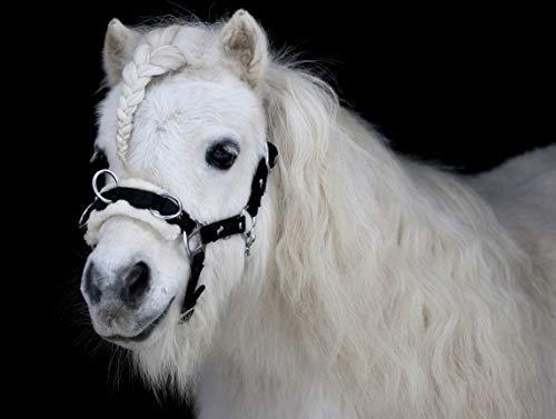 Tysons Breeches Bruno Nylon Kappzaum Mini Shetty Minishetty Welsh Plüsch abnehmbar 3 Ringe Pferde Motiv (Shetty)