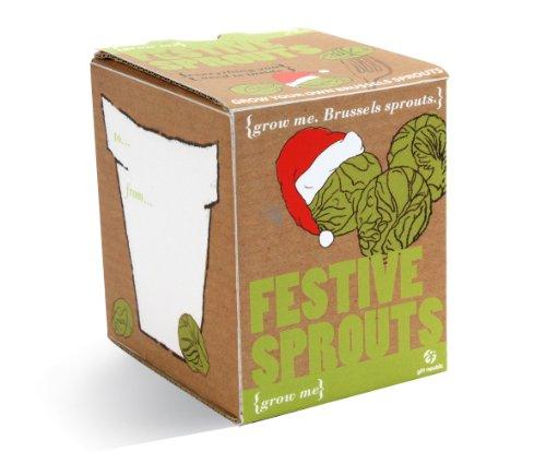 Gift Republic Ltd Grow Me Sprouts Kit de Culture de Choux de Bruxelles