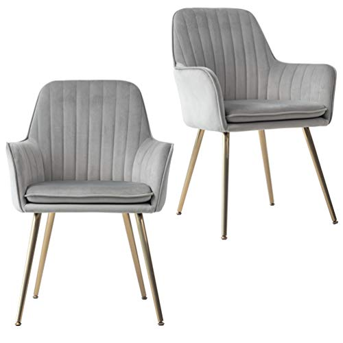 Five Stars Furniture Accent Living Room Leisure Armchair Velvet Fabric Dining Chair with Golden Metal Legs (Light Gray) Set of 2