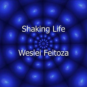 Shaking Life