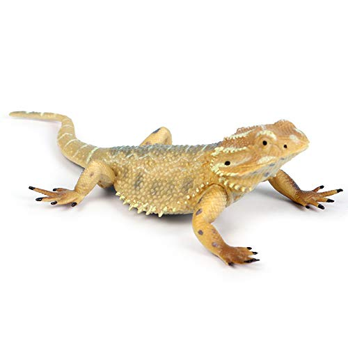 Rich Boxer Lizard Figurine Realistic Plastic Lizard Reptile Figurine for Collection Science Educational Prop