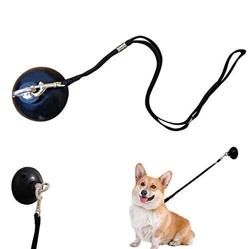YELL Hundeleine mit Saugnapf, Befestigung mit Halsband, hält den Hund in der Badewanne oder Dusche – jede Größe