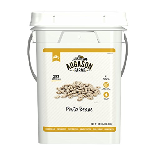 wise food storages Augason Farms Pinto beans Emergency Bulk Food Storage 4 gallon Pail 253 Servings