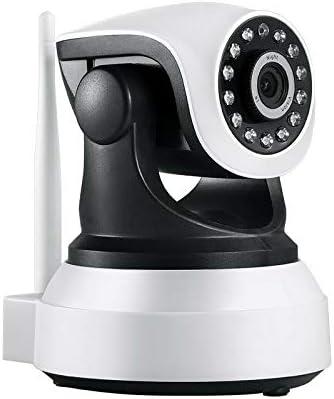 dog-monitor-camera-monitor-check