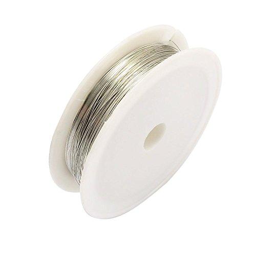 PandaHall 20 Rotolo Filo Metallico, Realizzato in Ferro, Cavo per Creare Gioielli, infilare Perline, Diametro: 0,3 mm, Lunghezza Circa 10 m/Rotolo