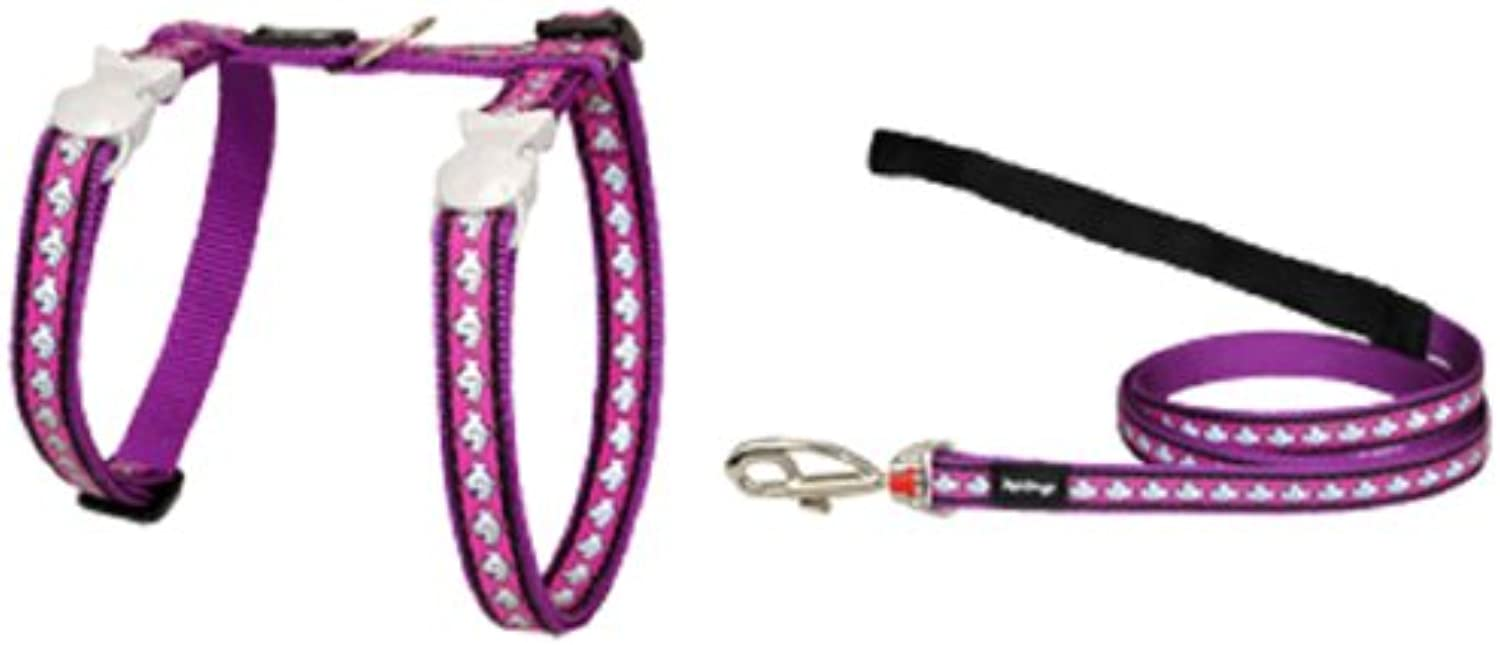 Red Dingo Reflective Cat Harness and Lead Combo, Purple
