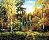 WLYUE Pintura de paisaje de bosque de abedul otoñal por números en lienzo para pared para sala de estar, decoración del hogar, regalos de Navidad