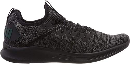Puma Herren Ignite Flash Evoknit Cross-Trainer, Schwarz (Puma Black-Dark Shadow-Ponderosa Pine 20), 42.5 EU