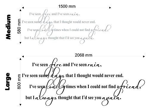 Preisvergleich Produktbild Wonderous Wall Art Wandtattoo / Wandaufkleber mit Zitat von James Taylor I've Fire and I've Seen Rain,  mittelgroß,  Schwarz