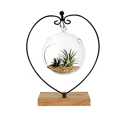 Awesomes Air Plant Stand/Flower Pot Stand Holder Iron Pothook Stand for Hanging Glass Terrarium