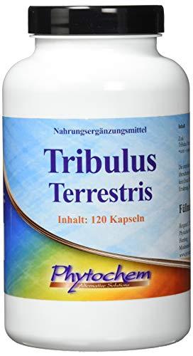 Tribulus Terrestris 1200 mg | Testosteronbooster für Muskelaufbau und Libido | 120 Kapseln hochdosiert | Premium Qualität aus Deutschland