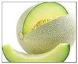 50 Honeydew Green Melon Seeds | Non-GMO | Fresh Garden Seeds