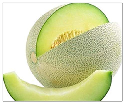 50 Honeydew Green Melon Seeds   Non-GMO   Fresh Garden Seeds