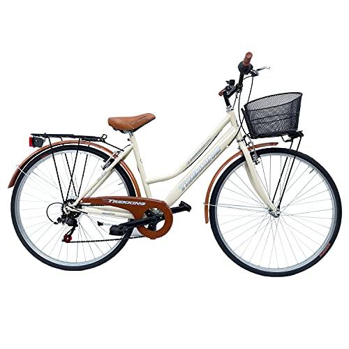 bicicletta donna con cestino Bicicletta Donna da Passeggio Olanda Misura 28 Bici da città Vintage retrò con Cestino Beige Con Cambio