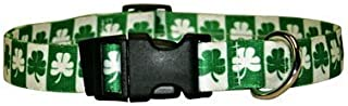 """Shamrock Dog Collar - Size Small 10"""" to 14"""" Long - Made In The USA"""