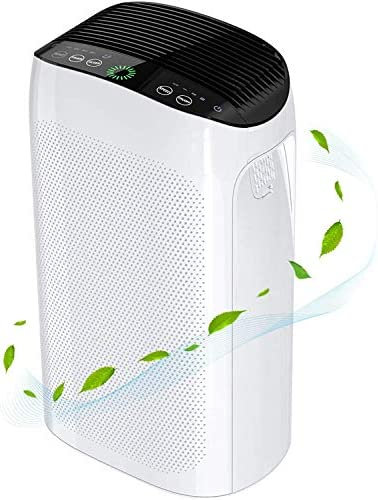 Air Purifier for Home Large Room up to 495 ft H11 Smart True HEPA Air Purifie for Allergies product image