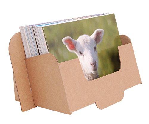 stand-store card-a6l Karton Prospektspender für Prospekte und Postkarten A6quer–Braun (10Stück)
