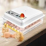 TTLIFE Incubadora digital automática de 16 huevos, con pantalla LCD y control inteligente de temperatura para incubar pollo, pato, ganso, codorniz, pavo