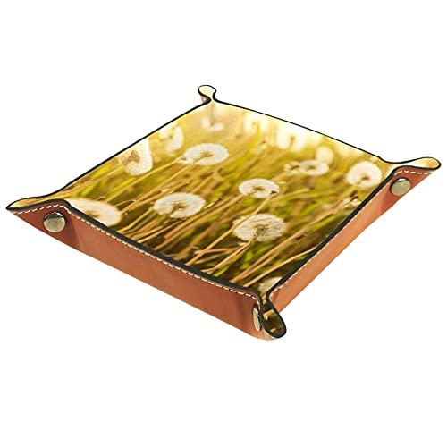 AITAI Bandeja de valet de cuero vegano, organizador de mesita de noche, placa de almacenamiento de escritorio, naturaleza realista de campo de diente de león en el sol