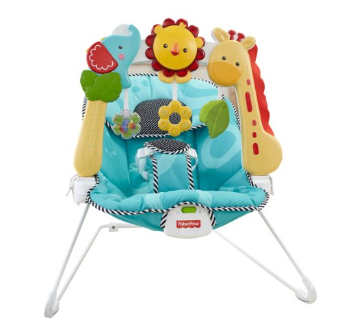Fisher Price Strollers 2-in-1 Sensory Stages Bouncer