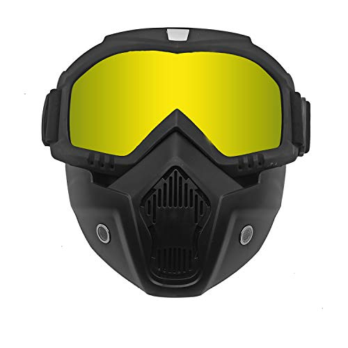 Motorcycle Helmet Riding Goggles Glasses with Removable Face Mask, Detachable Fog-Proof Goggles...