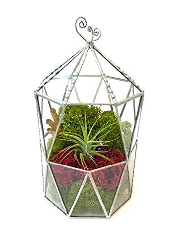 Terrarium octogonal avec toit en forme de cage - Pot de fleurs en verre - Moderne - Fait à la main en Angleterre - Taille L - Argenté