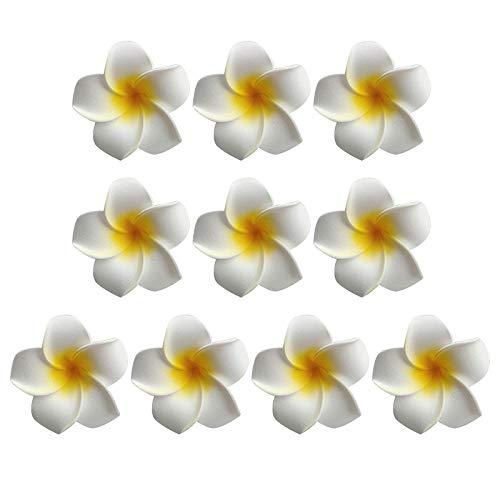Frcolor Pinza de pelo flor hawaiana cabello flores playa boda, paquete de...