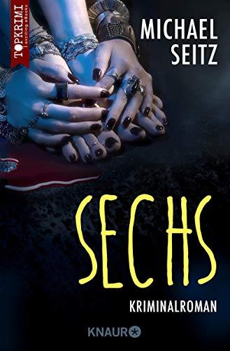 Sechs: Kriminalroman (Falco Brunner 3)