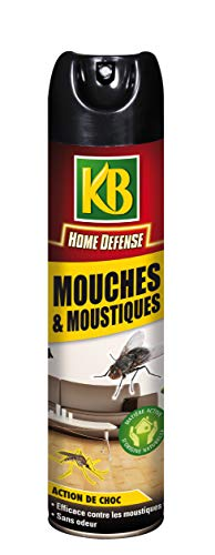 KB Mouches et Moustiques...