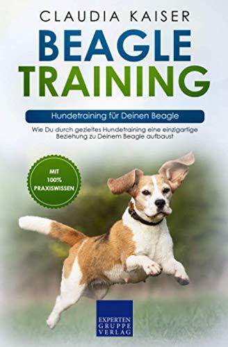 Beagle Training – Hundetraining für Deinen Beagle: Wie Du durch gezieltes Hundetraining eine einzigartige Beziehung zu Deinem Beagle aufbaust
