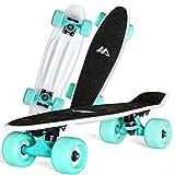 LDDLDG Skateboard Enfant Planches à roulettes for Les débutants Mini Cruiser Planche à roulettes en Plastique for Enfants Garçons Filles Jeunes débutants (Color : White+Blue)