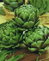 Légumes - Kings Seeds - Flux des paquets - Artichaut Green Globe