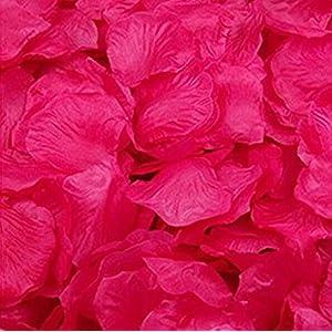 Magik – Pétalos de rosa de seda para decoración, varias opciones, 1000~5000 unidades, Blanco, 1000