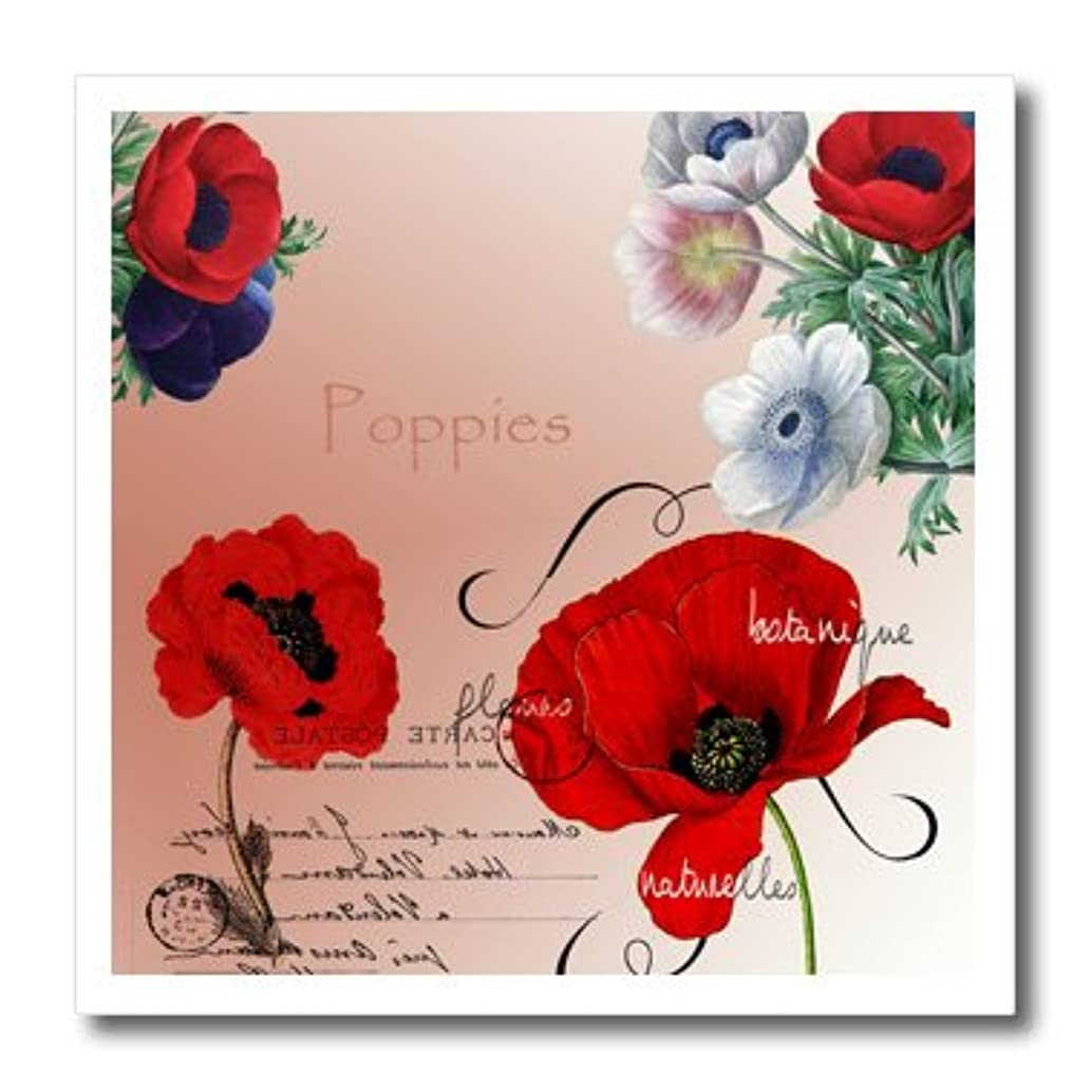 3dRose ht_79337_3 Vintage Pretty Poppies French Botanical Art-Iron on Heat Transfer for Material, 10 by 10-Inch, White