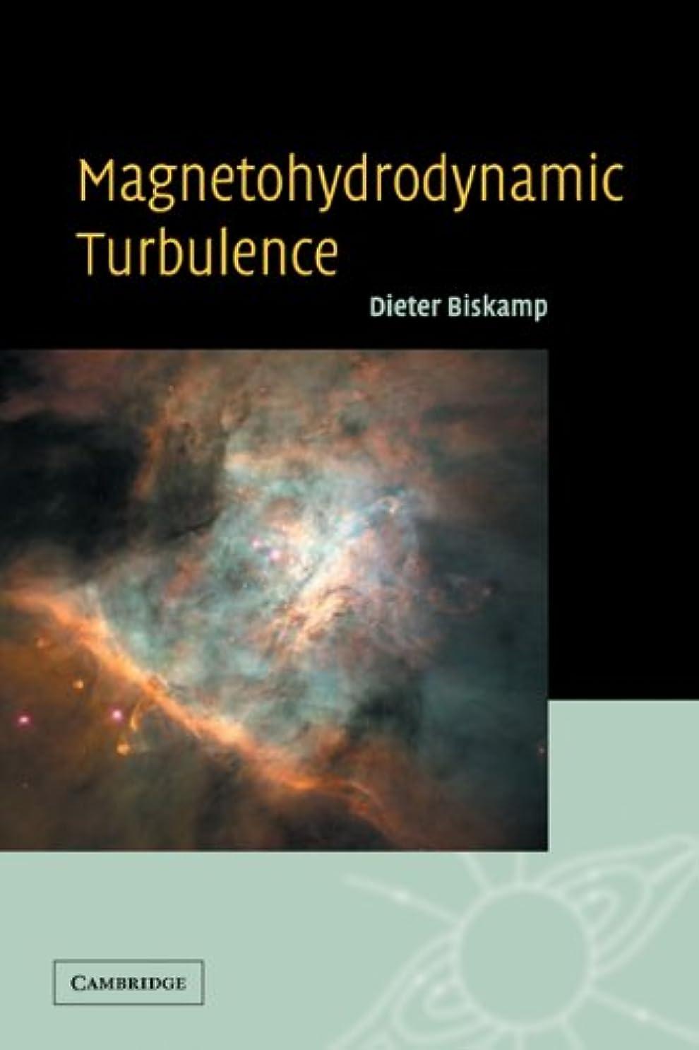 吸収する滞在ベーカリーMagnetohydrodynamic Turbulence