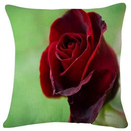 Gotas de rocío de Rosas Rojas - Flor- # 47096 - Fundas de cojín de Felpa Fundas de Almohada Fundas de Almohada Decorativas Simples de Moda súper Suaves