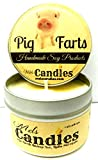 Pig Farts (Smells Like Bacon Bits) 4 oz All Natural Handmade Soy Candle Tin