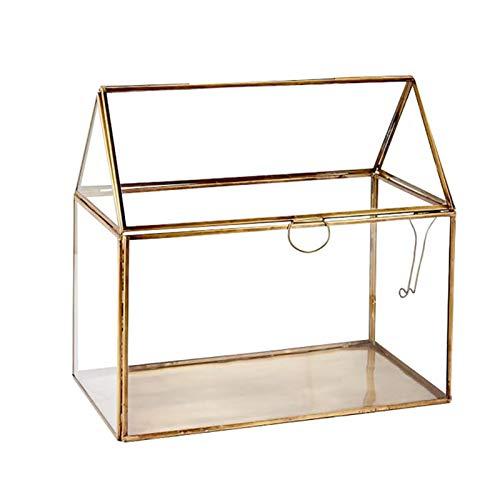 Terrarium Glas,Geometrisches Terrarium Pflanzen Saftig, Luftpflanze Kreative Weinlese Miniaturgeometrische Geformte Glas-Blumen-Raum-kreative Hauptdekoration Saftige Moos Container(150 * 100 * 150mm