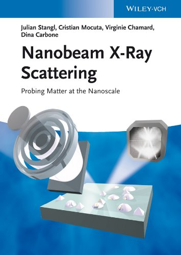 Nanobeam X-Ray Scattering: Probing Matter at the Nanoscale (English Edition)
