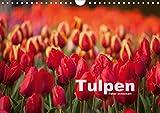 Tulpen (Wandkalender 2021 DIN A4 quer)
