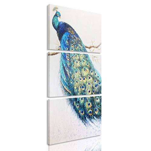 MELTBOR 3 Piece Peacock Feathers Canvas Wall Art Painting for Living Room Farmhouse Décor 12''x16''