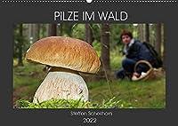 PILZE IM WALD (Wandkalender 2022 DIN A2 quer): Die schoensten Pilze aus den heimischen Waeldern (Monatskalender, 14 Seiten )
